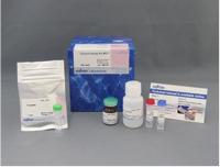 Glucose Assay Kit-WST