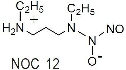 NOC 12