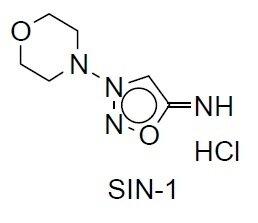 SIN-1