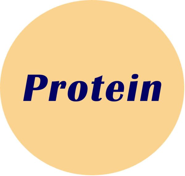 BSA protease low, IgG & Enzyme free, 100g